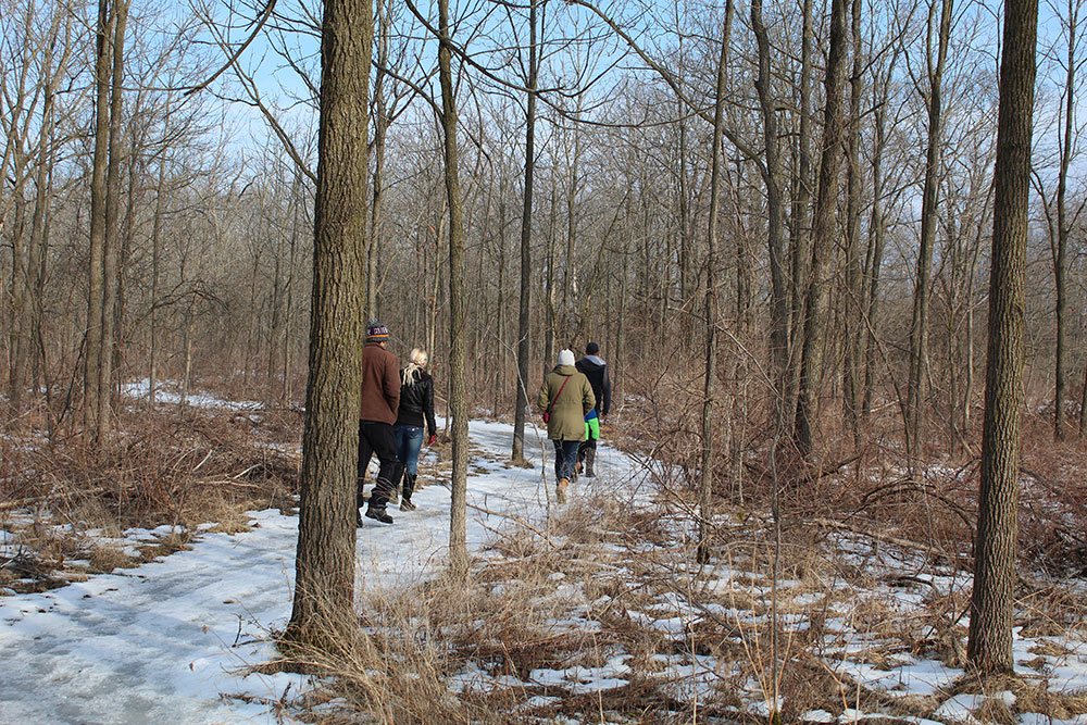 Six Nations Winter Trail