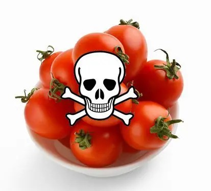 Tomatoes were once feared in Europe. They were thought to be poisonous.