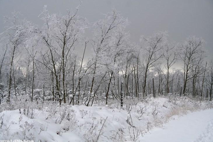 Snijeg - Sjenica
