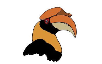 KIKI, The Hornbill Goes To School – SJIS Adopts A Hornbill