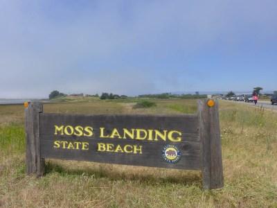 Always wondered where Moss Landing State Beach was.