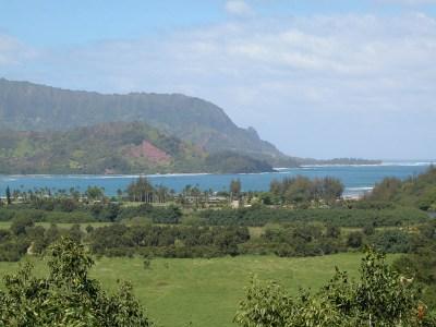 Hanalei Bay from the roadside lookout.