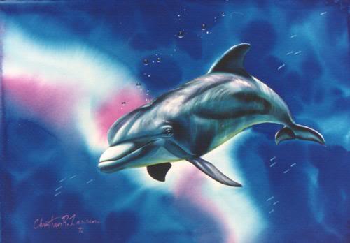 Dolphin Consciousness