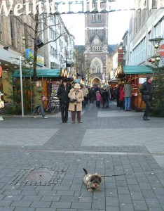 Leaving the Aldstadt, we encountered the cutest dog. How cute was he?