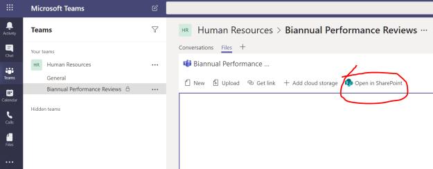 Microsoft Teams  Teams  Human Resources > Biannual Performance Reviews •  Biannual Performance  in