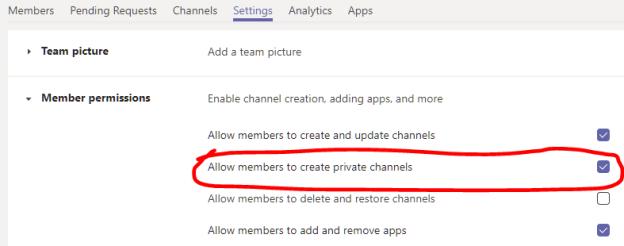 Microsoft Teams: Team Settings
