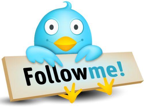 https://i1.wp.com/www.sjmp.de/wp-content/uploads/2009/05/twitter-follow-me-post.jpg