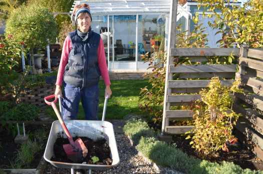 Förbered marken för odling