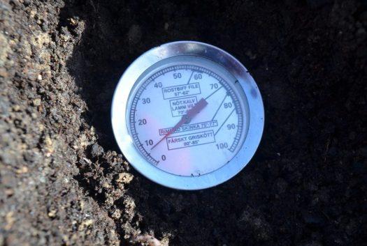 Mäter jordtemperaturen med köttermometer