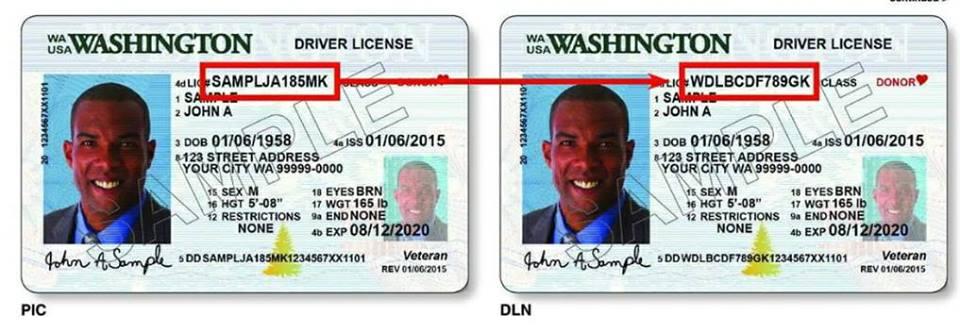 drivers license update address wa