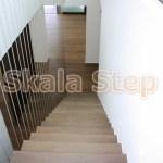 Isies&Goniakes-Isv&Skalastep (10)