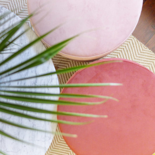 Réalisation du studio d'architecture et de décoration Skéa Designer. Velouté. Trois poufs en velours et une palme.