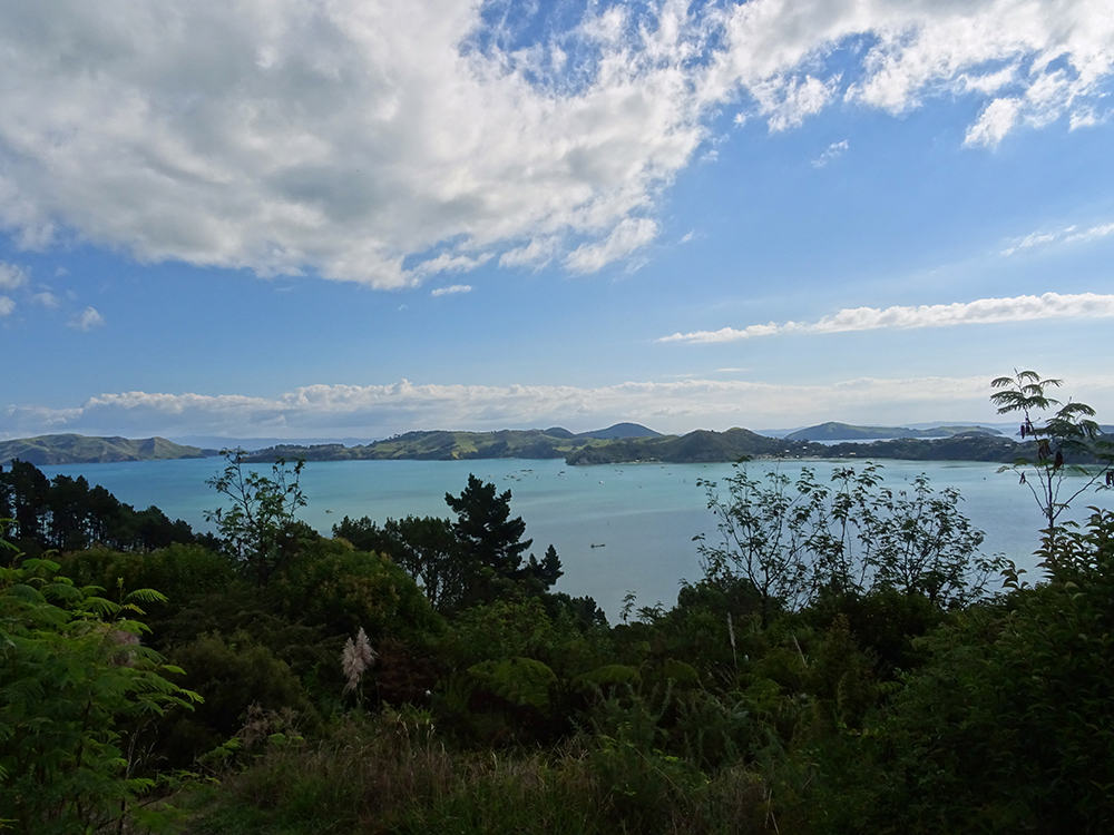 View from the PA Lookout Point Coromandel