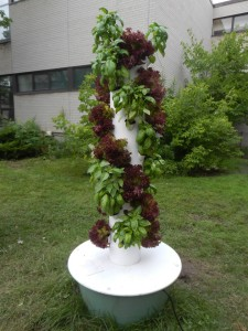 A tower garden stands in the middle of the field.