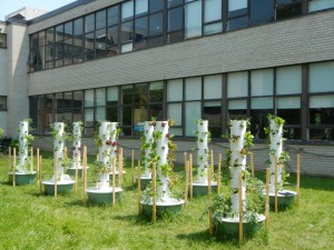 10 Tower gardens are situated at Thistletown Collegiate Institution