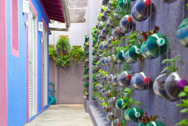 Urban Mini Garden