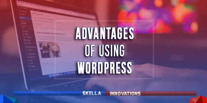 Advantages of Using WordPress for Your Website