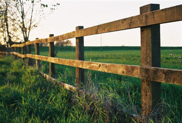 Farm_fence_in_Watlington