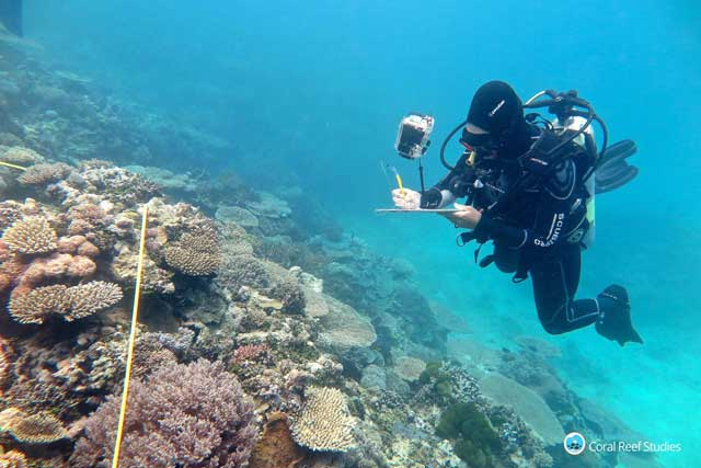 #GreatBarrierReef has suffered worst bleaching on record in 2016 – #climate