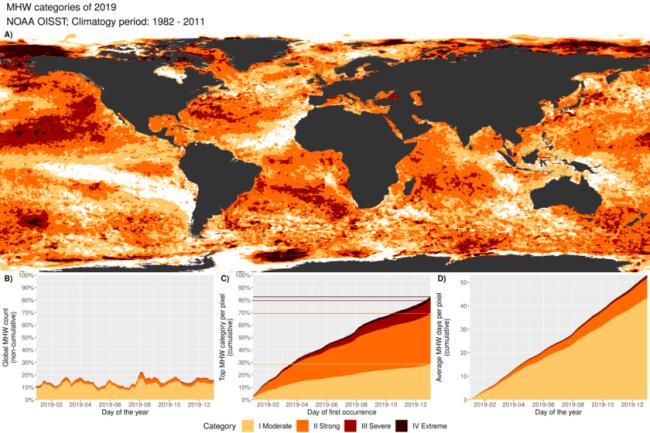 ocean heatwaves