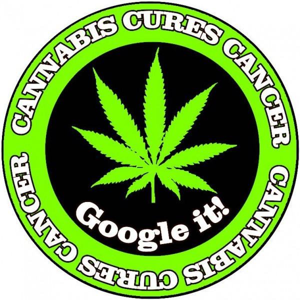 Marijuana and cancer – Sanjay Gupta's anecdotes not science