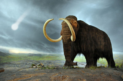 asteroid-mammoth