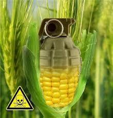 gmo-grenade