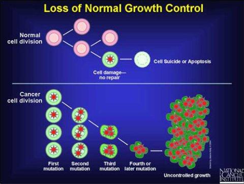 cancer-mutation-graphic