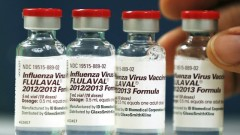 flulaval-flu-vaccine