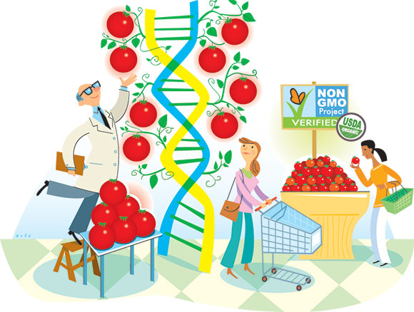 GMO-labelling