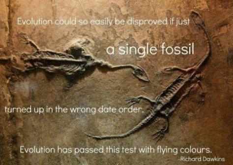 Americans accept evolution as a fact