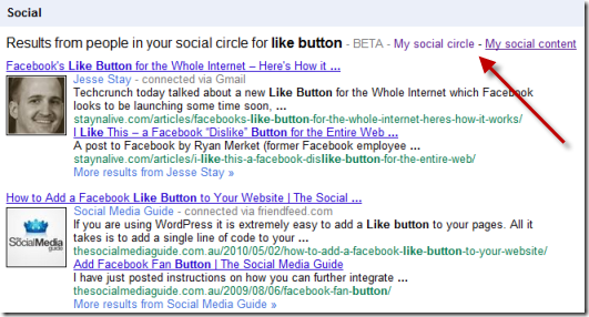 Google Socal Search Like Button