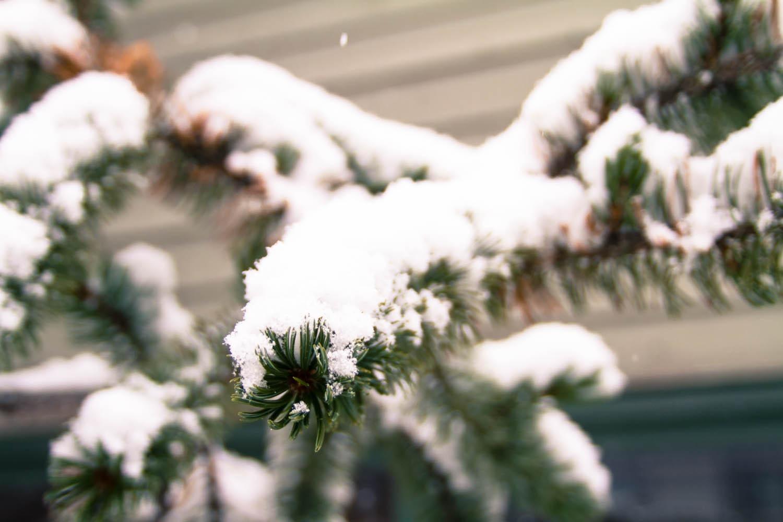Kirkwood Mountain Resort snowfall, Kirkwood snow storm, Kirkwood opening day