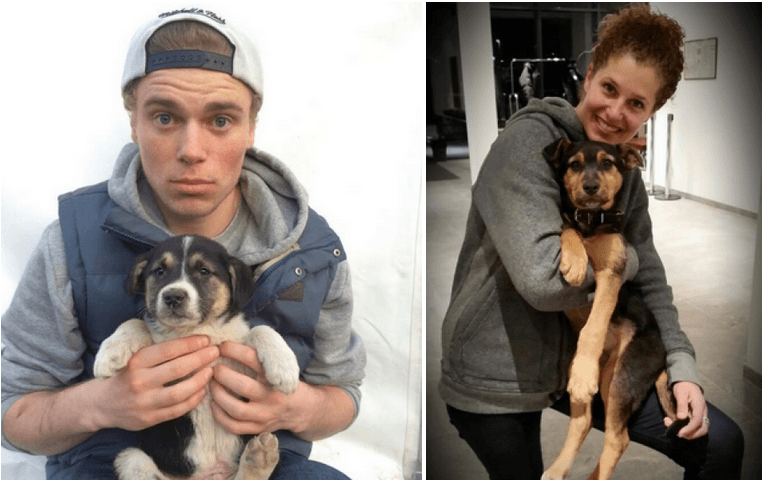 Gus Kenworthy and Lindsey Jacobellis Adopt Stray Sochi Puppies