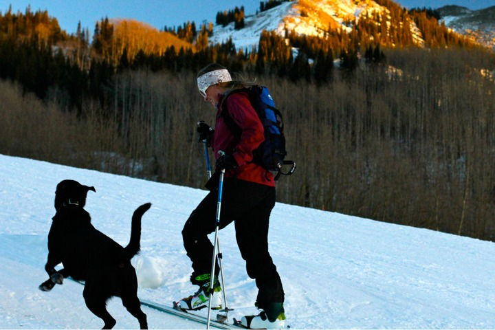 Crested Butte photo 17