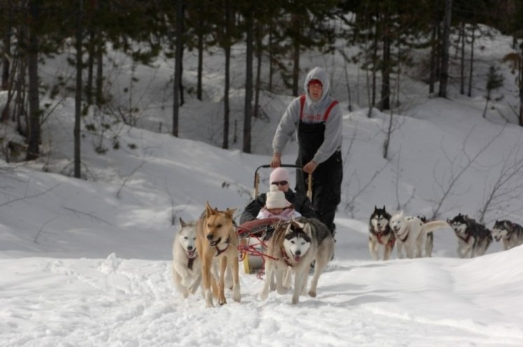 Kimberley dog sledding