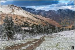 Alta September snow