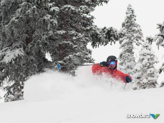 Snowbird storm, Snowbird snow storm, how much snow did Snowbird get?