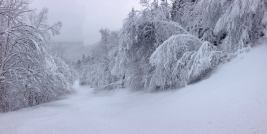Excellent coverage on Stowe's famous run, Chin Clip | Photo: Stowe Mountain Resort, Dec. 11, 2014