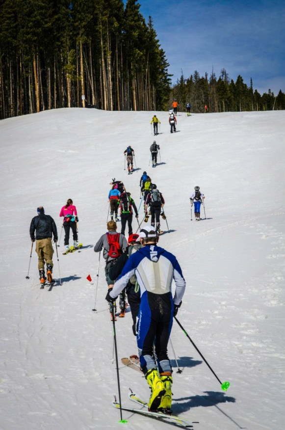 Breck Ascent Series