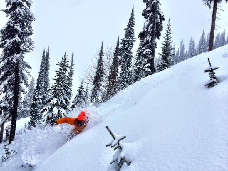 Powder Highway