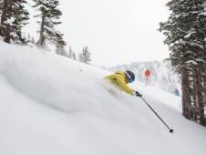 Alta snow, snowfall Alta, new snow Alta Utah