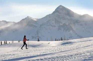 Telluride's on-mountain Nordic trails provide a unique experience to enjoy high-alpine views. | Photo: Telluride Ski Resort