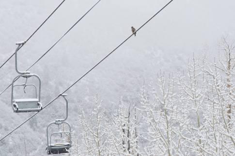 new snow Aspen Snowmass