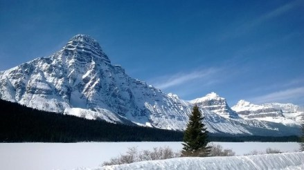 banff national park sightseeing tour