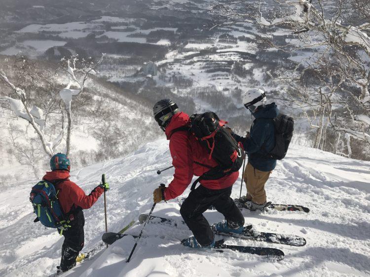 japan tree skiing, hokkaido tree skiing