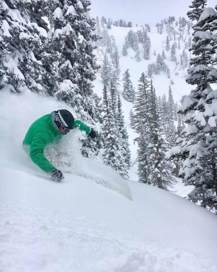 Solitude tree skiing, solitude glades