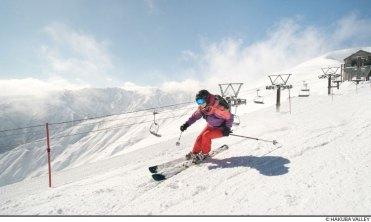 honshu skiing, nagano skiing
