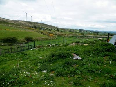 Skibbereen-Animal-Sanctuary-and-Rescue-Centre (233)
