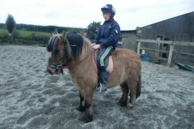 Skibbereen-Animal-Sanctuary-and-Rescue-Centre (275)